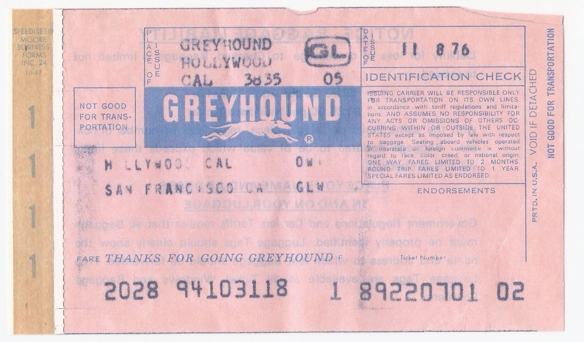 "Character Analysis of the ""Greyhound Tragedy"" by Richard Brautigan – Essay Sample"